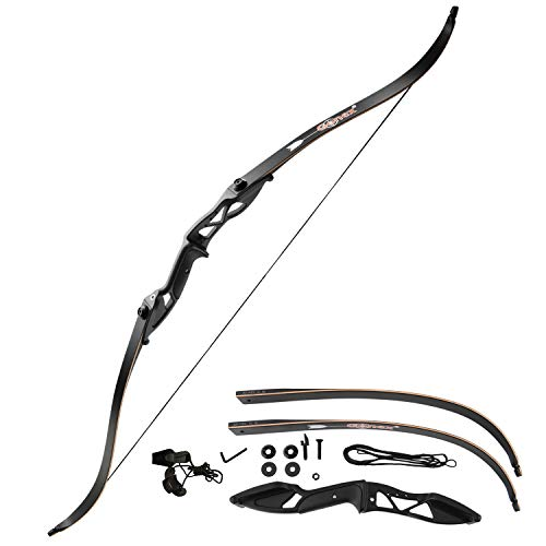 Gonex Takedown Recurve Bow, Hunting Archery Bow Long Bow for Beginner, 56' Right Handed Longbow 40...