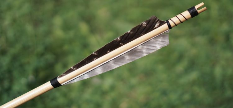 arrow vanes